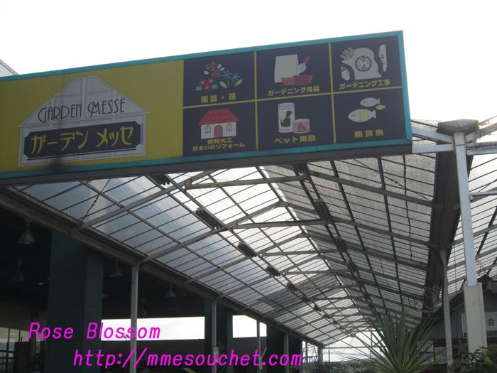 shop20101004.jpg