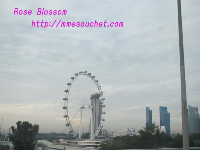 singapore20101126.jpg
