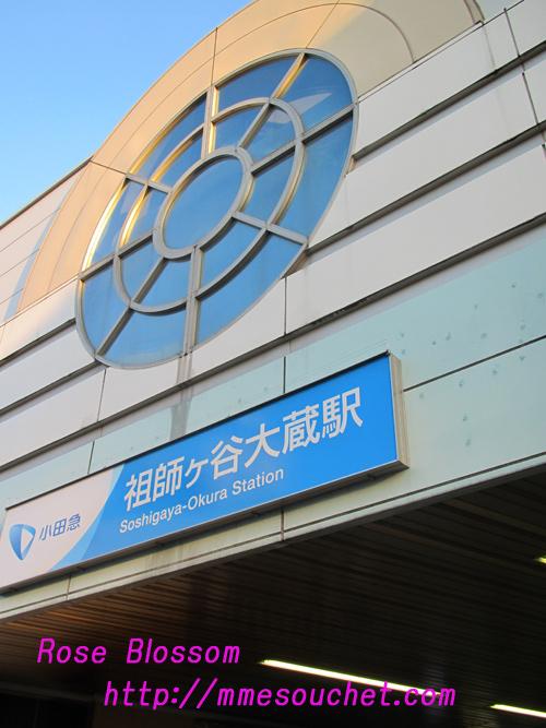 sosigayaeki20101105.jpg