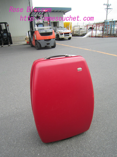 suitcase20100708.jpg