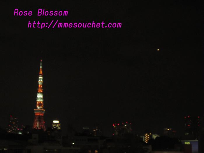tower20100928.jpg