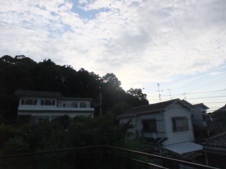2011_08030001.jpg