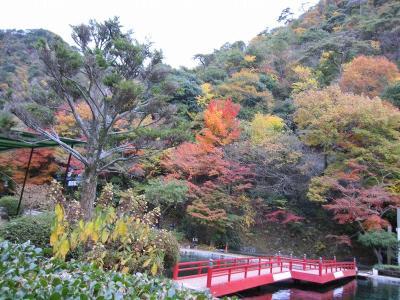 s-20101117瑞宝寺公園と鼓ヶ滝 156