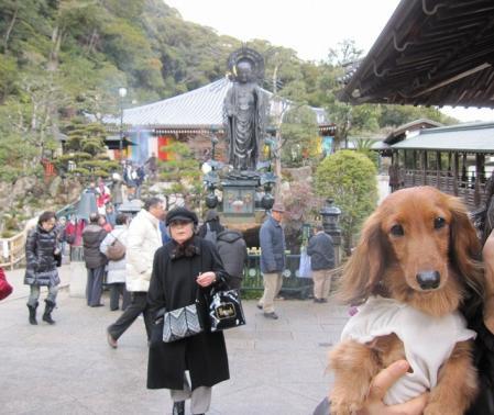 s-20110107清荒神&水森亜土 013