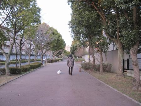 s-20110111ミユともも散歩 024