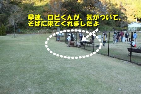 IMG_9238-1.jpg