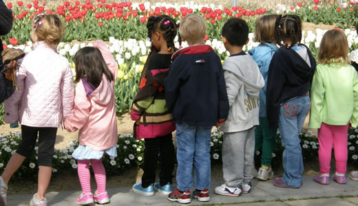 子供達のチューリップ祭@六甲アイランド-2