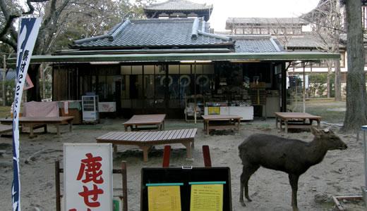 2012奈良へ行った(3)-2
