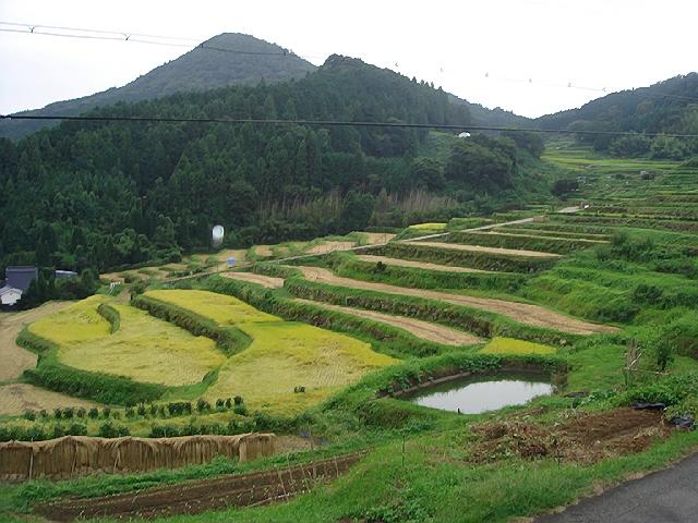 茅葺き屋根の農家で宿泊体験(^^♪@北摂(大阪)