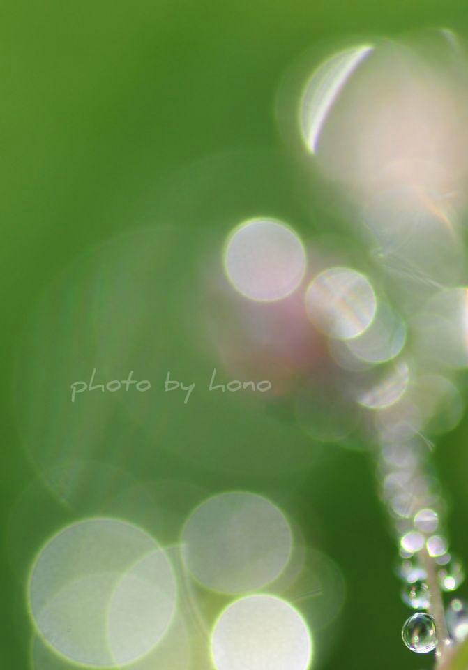 20111211-16.jpg