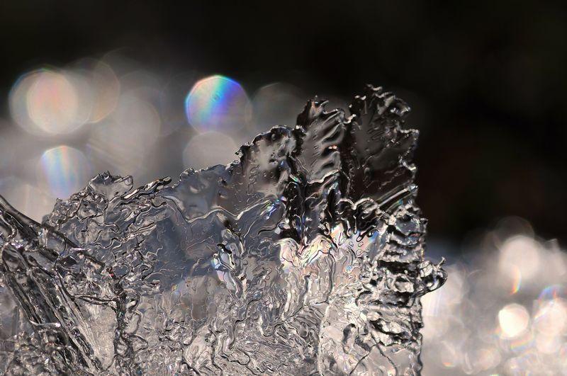 20111225-35.jpg
