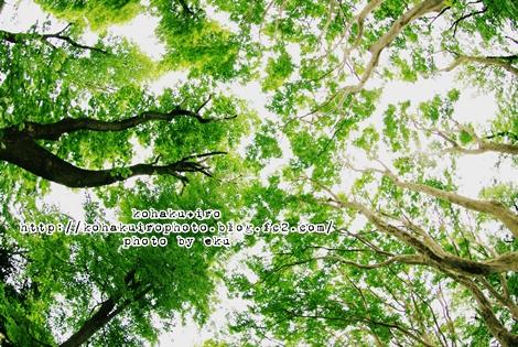 ki_20120610231312.jpg