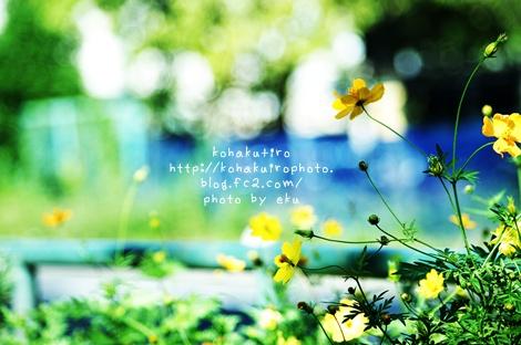kibana4.jpg