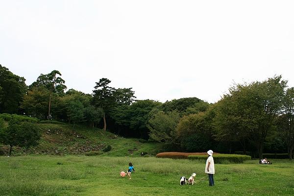 20109271