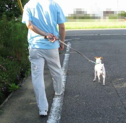 お散歩レッスン父1