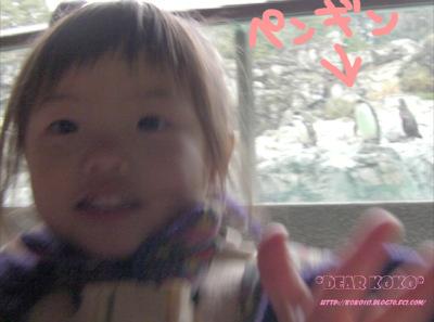 SANY0051_20120328113811.jpg