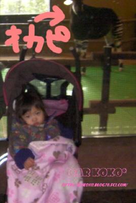 SANY0057_20120328120121.jpg