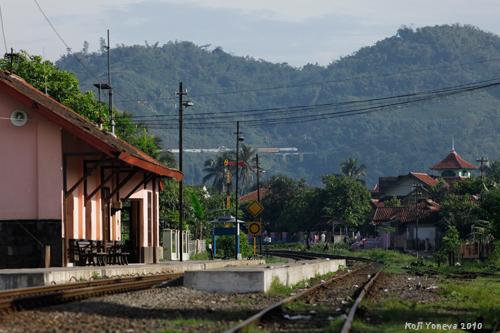 20100918b.jpg