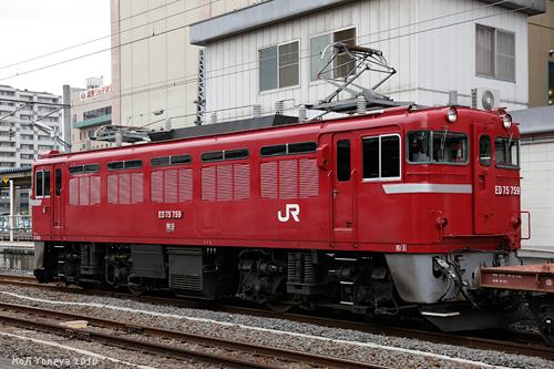 20101005c.jpg