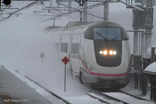 20110112b.jpg