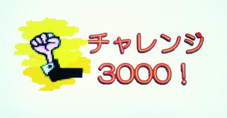 チャレンジ3000