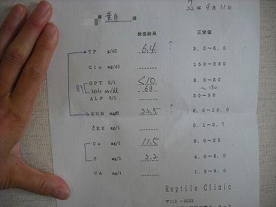 v-DSCF5511.jpg