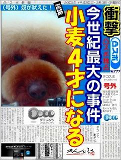 decojiro-20110129-190205.jpg