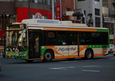 S-V300