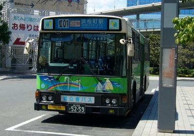 Y-A462.jpg