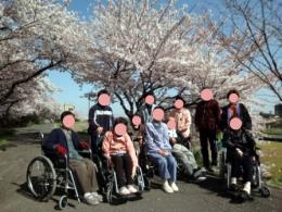 20110412花見07