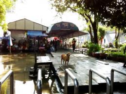 20111031Chaophraya5.jpg