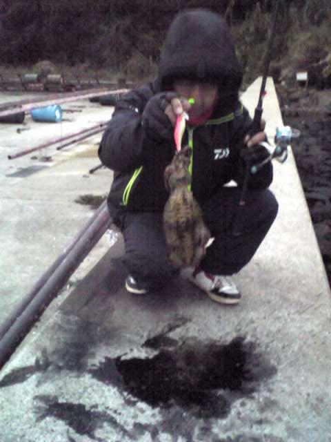 松浦エギング釣果7