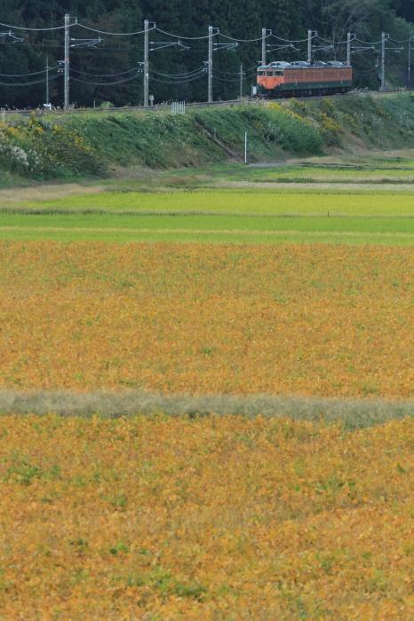 12.11.01 秋の田畑
