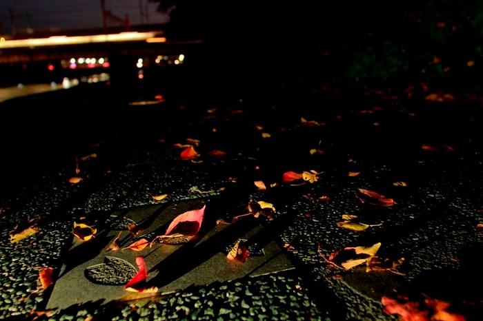 13.11.09 夜の彩 山科~京都 17-35f2.8L