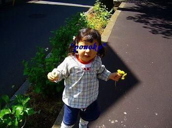 ぽのこ2010年5月②