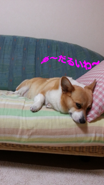 20120822_214210.png