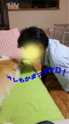 20120916_193114.png