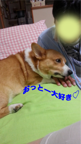 20120916_193634.png