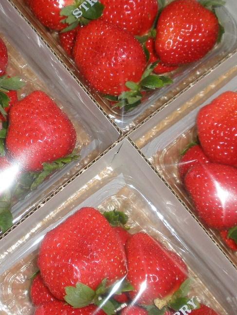 blog-imgs-45.fc2.com/k/o/s/kosuzume3/002.jpg