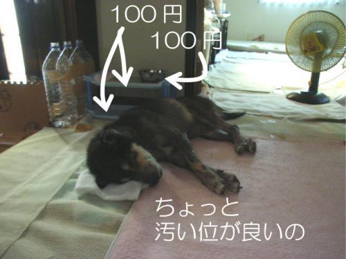 100821_20100821095641.jpg