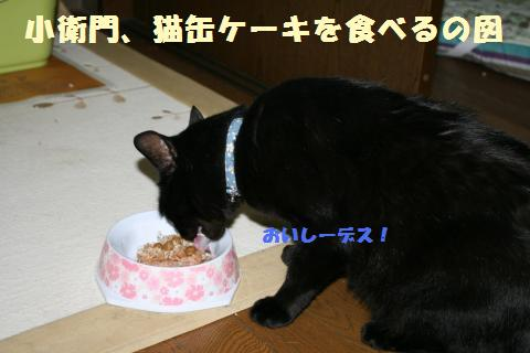 001_convert_20120530214751.jpg