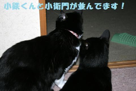 001_convert_20120605193241.jpg