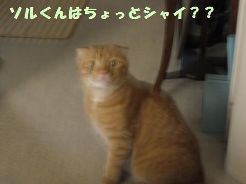 001_convert_20120708163957.jpg