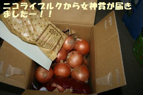 001_convert_20121118205814.jpg