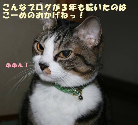 002_convert_20120331161038.jpg