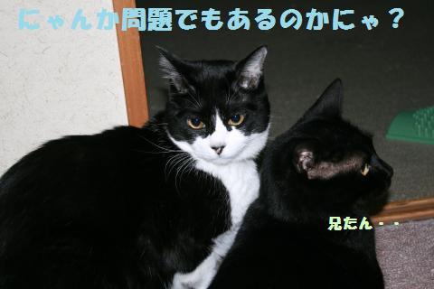 002_convert_20120605193330.jpg