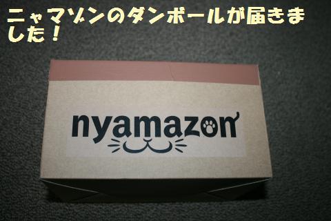 003_convert_20120512222052.jpg