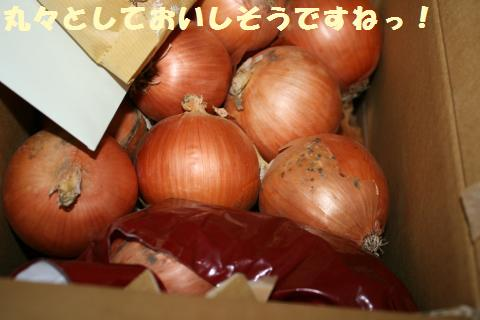 003_convert_20121118205933.jpg