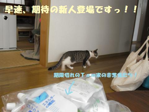 004_convert_20120317202912.jpg
