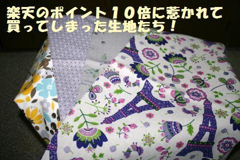005_convert_20120313193447.jpg